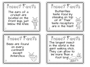 All About Insects Pack for 2nd Grade
