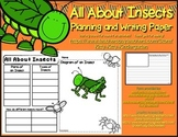 All About Insects Planning and Writing Activity #kinderfriends