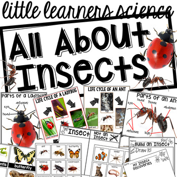 All About Insects- Science for Little Learners (preschool, pre-k, & kinder)