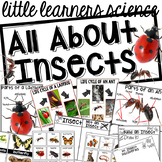 All About Insects- Science for Little Learners (preschool,