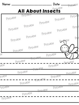 All About Insects: Writing Templates
