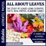 All About Leaves- Math, Science and Literacy