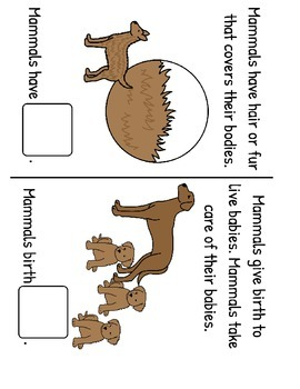 All About Mammals! Fact and Vocabulary Book