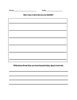 All About Mammals Lesson Worksheet