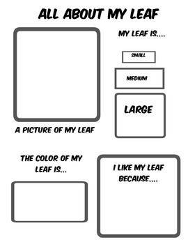 All About My Leaf Report