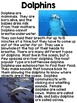All About Ocean Animals