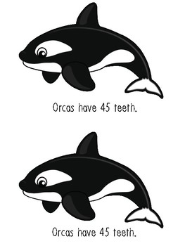 All About Orcas Unit