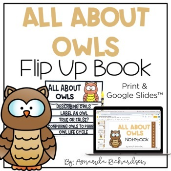 All About Owls Flip Up Book