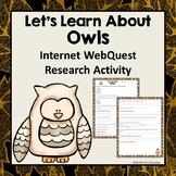 Owls Informational Reading Webquest - Fun Research Activity