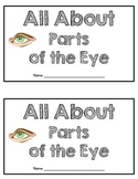 All About Parts of the Eye