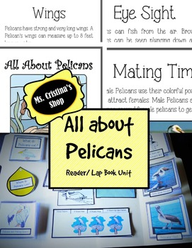All About Pelicans Reader/Lap Book