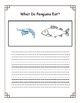 All About Penguins Differentiated Booklet