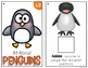 All About Penguins Adapted Books { Level 1 and Level 2 } Penguin Species