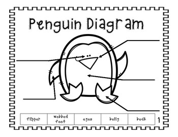 All About Penguins Book
