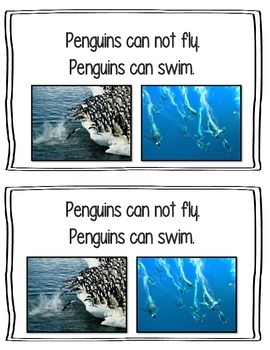 All About Penguins Emergent Reader