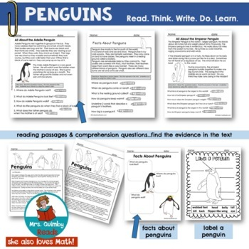 All About Penguins | Read and Write | Research Penguins