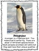 All About Penguins Research