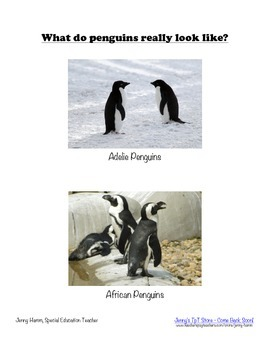 All About Penguins Unit- facts, writing, reading, printables, counting & more!