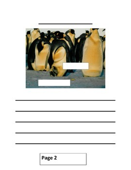 All About Penguins Writing