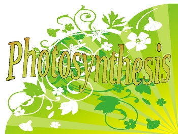 All About Photosynthesis PowerPoint