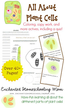 All About Plant Cells Pack