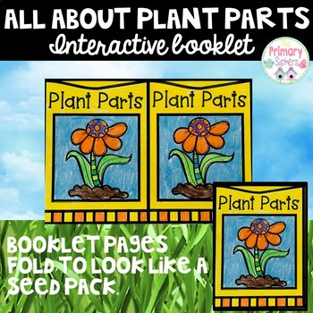 All About Plant Parts
