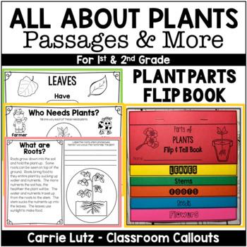 Plants Plants Plants (Primary Grades)