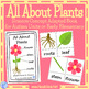 All About Plants- A Science Concept Adapted Book for Autism Units or Early Elem