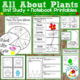 All About Plants: Activities and Plant Life Cycle Science