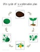 All About Plants: An Interactive Science Unit for Special Education