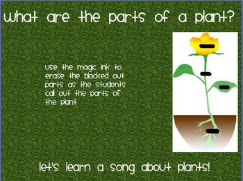 All About Plants Flipchart