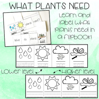 All About Plants Freebie - Parts of a Plant, Plant Life Cycle, What Plants Need