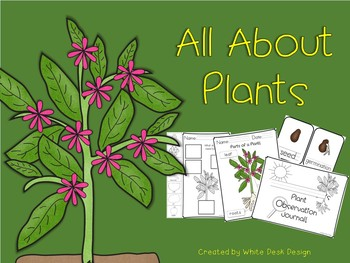 All About Plants {Informational}