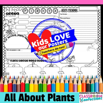 Plants Activity:  parts, functions, life cycle of bean plant