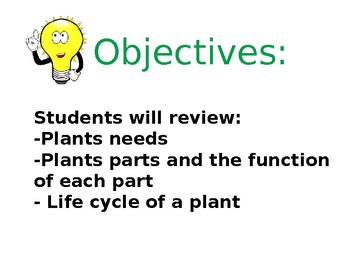 All About Plants Revision