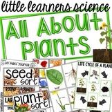 All About Plants - Science for Little Learners (preschool, pre-k, & kinder)