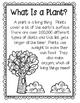 All About Plants Unit