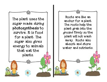 All About Plants Unit!  {Foldables for Your Science Notebook!!}