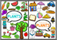 Life Cycle of Plants - Plant Needs, Parts of Plant for Kindergarten and Year 1