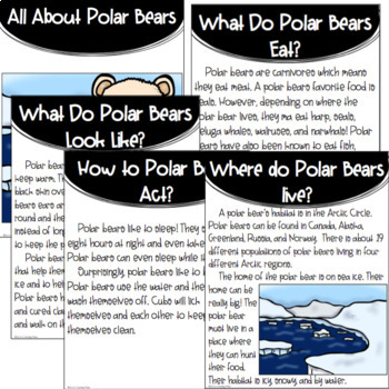 Arctic Animals: Polar Bears