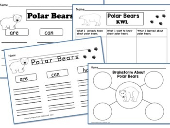 All About Polar Bears, Writing Prompts, Graphic Organizers, Diagram