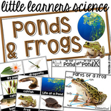 All About Ponds & Frogs Science for Little Learners (preschool, pre-k, & kinder)