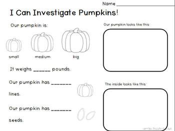 All About Pumpkins (13 activites plus more!)