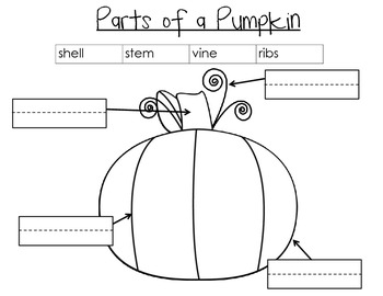 All About Pumpkins- Common Core Aligned Book