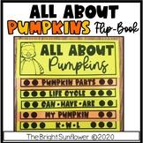 All About Pumpkins Flipbook