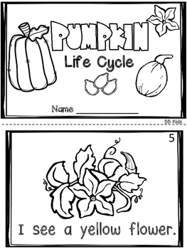 All About Pumpkins/ Life Cycle / Sequencing/ Emergent Readers / Kindergarten