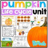 Hands On All About Pumpkins Activities