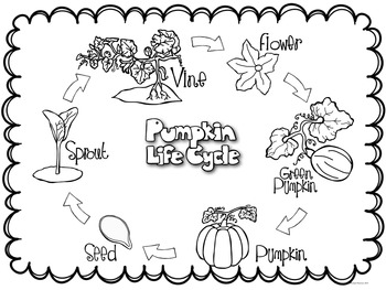 Pumpkins {Pumpkins Craftivity, Mini-Book and More!}