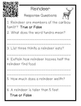 Reindeer: A Close Read
