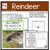 All About Reindeer-A Literature Study!